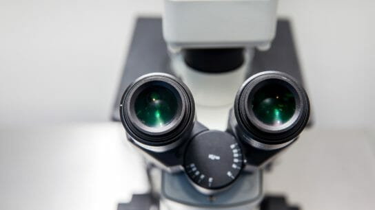 Close up of stereo microscope eyepieces